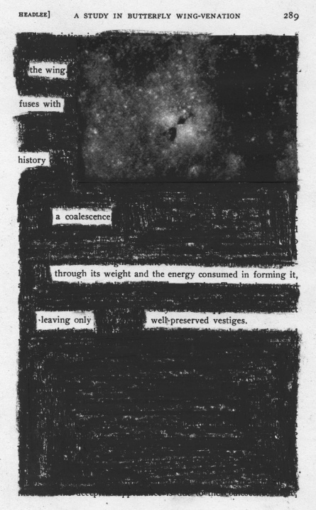 "This article, ""A Study of Butterfly Wing-Venation,"" appeared in the 1907 volume ""Smithsonian Miscellaneous Collections.""  I have heavily redacted it to create a poem.  The faint picture in the upper right is a Lunar Reconnaissance Orbiter (LRO) photo of an impact site on the moon with butterfly ejecta pattern.  (Some speculate that this is the impact site of Lunar Orbiter 2, which impacted the surface in 1967.)  Photo credit: NASA/GSFC/Arizona State University"